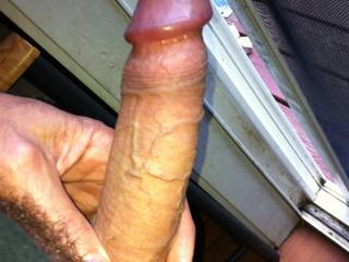 Stiff Cock for your taking