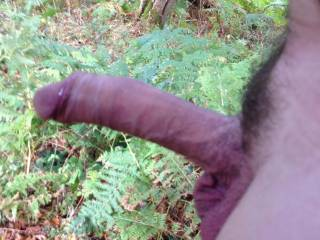 Well if your in the woods you must get your cock sucked :)