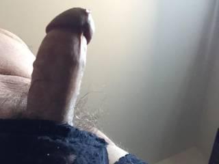 Erect in panties