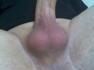 My shaved dick and balls