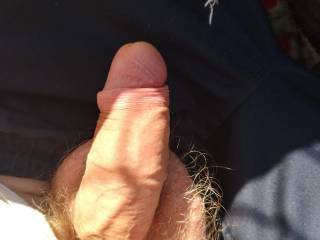 Im 57 and my cock still gets hard. But not always by its self. Pills work fine but i prefer having a female or male get me naturally hard. Mature women and men are awesome but i also like the tender stuff.