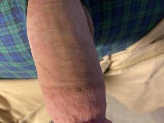 Let my penis out of my fly. Not fully hard. It needs to pump out its seed