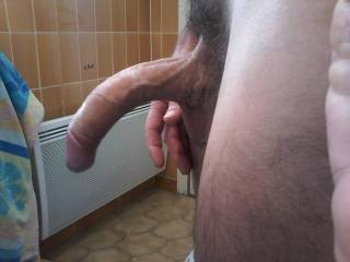 Nice cock...I could get on my knees and suck that cock so easily.  It looks so delicious.  I want to swallow it.....all of it.  MILF K