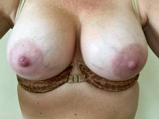 I was home alone and horny so I snapped a quick picture for the husband and sent it to him while he was at work.