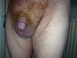 What would you do with my little cock?