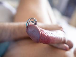 Yet another photo of my dick with piercing :)