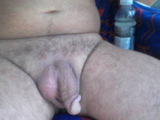 great looking cock, I want it in my mouth so I can feel it grow to impressive size and suck it till you cum in my hot mouth