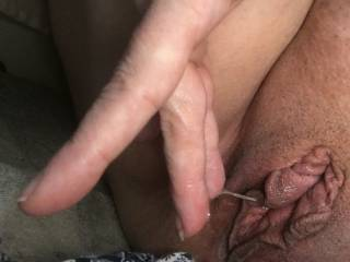 Kitten's wet pussy badly needs to be licked
