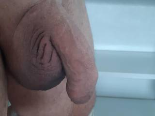 Just out of the shower shaved my cock