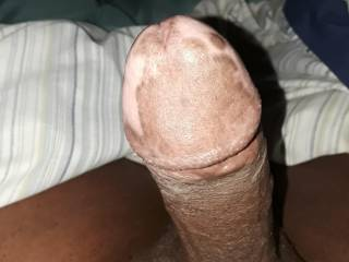 Hard cock looking for action ladies
