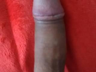 My cock nice and hard.
