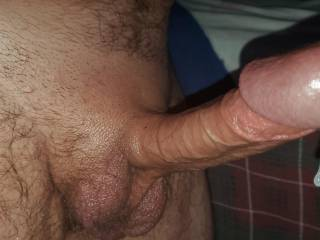 Being in quarantine too long has made my COCK hungry!