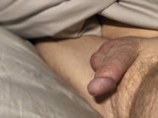 cock and balls soft