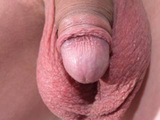 My cock and hanging balls