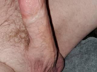 My Incredible big hard erect cock dick