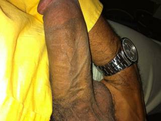 this is the cock you\'ve been looking for right? any ladies in or around the 804 area code wanna take a ride?