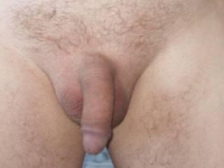 A nice trimmed cock, and all it needs is some tongue attention and it would soon be standing firm and proud.