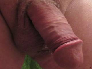 Quick shot of my Cock