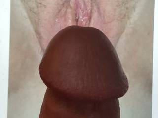 Dick on sexy vagina pic tribute