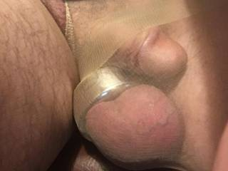 The boys like morning attention and rubbings through the nylon. Would surely enjoy a set of long fingernails gently caressing them. Looking for volunteers!