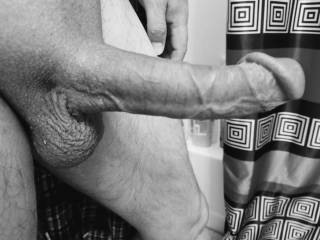 Long hard cock in black and white