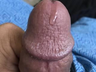 My horny cock leaking som hot pre cum