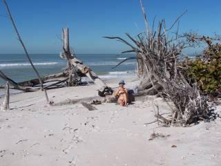 nude women sunbathing on beach