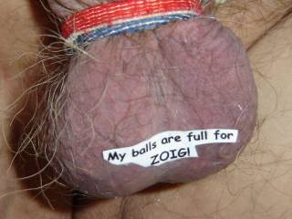 My balls full of cum for all my friends at ZOIG!