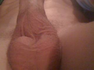 who wants a taste of this young cock?