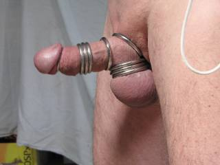 Nice cock and balls and love the hardware