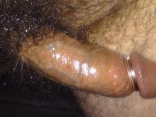 Getting ready to stroke my big, hard, hairy oiled up cock in full view of the neighborhood.