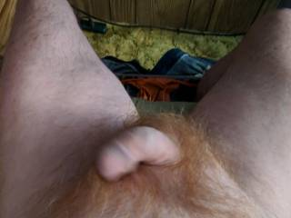 semi hard cock about to play anyone wanna help?