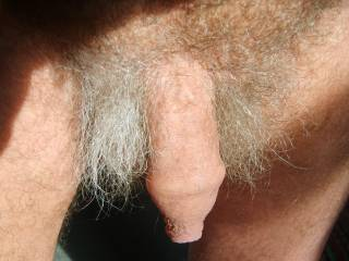 i have always enjoyed my uncut dick..  I kinda feel sorry for those that don't have one.. feels good to just play with the skin... thanks for the comments.