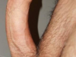 Mmmmm, big hard and trimmed... exactly how i like it... there' s a warm and wet place for you... your cock is so curvy that would fit perfectly in there...