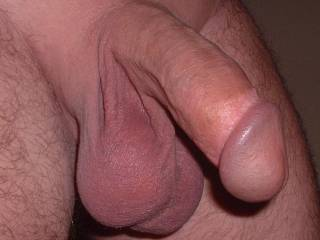 I love his big balls full of cum, what do you think about his cock and balls?