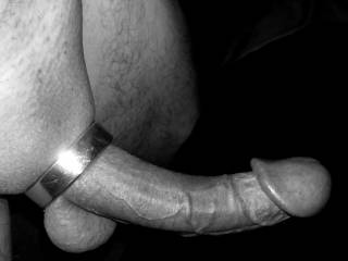 Long hard cock.  Big heavy balls.