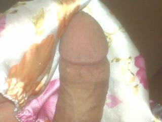 my nice hard cock wrapped in my wifes softest pair of satin panties