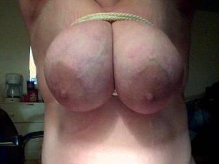 Mmmmmmm i love dirty whores that scream for me...love to get my hands on those nice big titties and give 'em a good seeing to!
