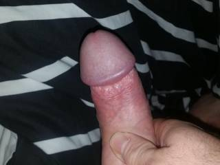 Playing with my cock on request for a young ladies pleasure