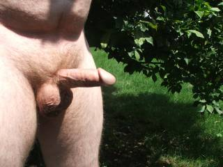 The wife likes this picture of your cock and if she were there when it was taken she would have been on her knees sucking it.  I know you would have liked that.