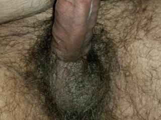 My big stiff cock and hairy balls. What would you like to do with?
