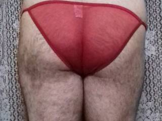 my little ass in transparent tiny panties