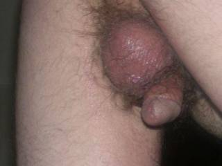 A very,very butt,balls & penis close up after a bathroom break on 12/14/07, circa 6:40pm central usa time.