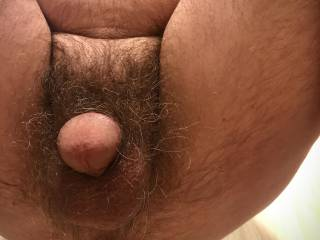 New weighted butt plug .