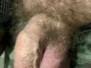 Amateur small soft hairy cock waiting for some action