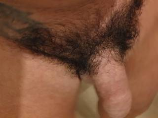Hairy cock