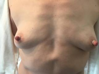 Hubby picked up some rubber nipple rings for me to try on. They make my nipples super erect and they stick out even farther than they normally do. Should I wear them out, braless? Do you like these nipples? Would you suck on them while they are like this?