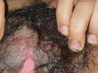 Spread wet hairy pussy