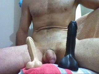 I would love to ride them then your great cock