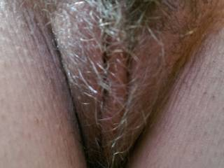 The close up of my hairy pussy. Should I shave it smooth or let it grow out to the full thick bush?